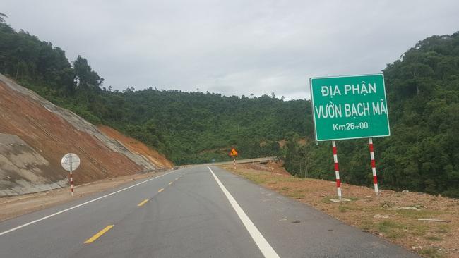 Những phương tiện nào được lưu thông trên cao tốc ngàn tỷ xuyên rừng Bạch Mã? - Ảnh 3.