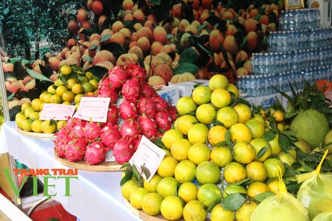 Hoà Bình: Nâng cao chất lượng, năng lực cạnh tranh các sản phẩm xuất khẩu - Ảnh 4.