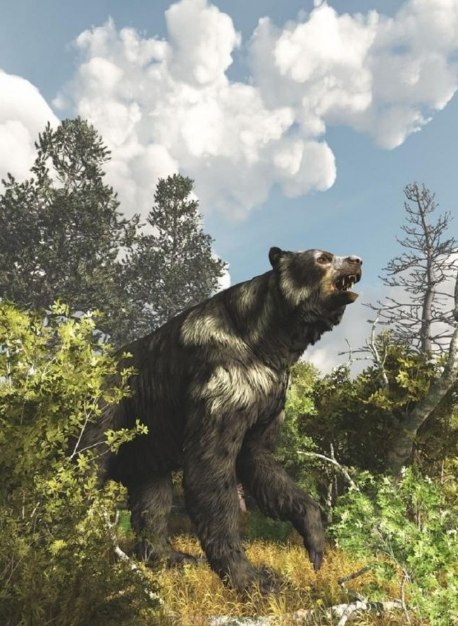 """Gấu nâu khổng lồ nhất thế giới cao 4,5m nặng 1,5 tấn: """"Sự thực hay chỉ là lời nói dối?"""" - Ảnh 4."""