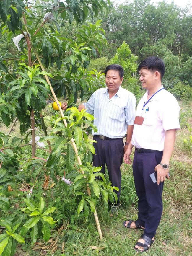 Cho thu nhập cao nhờ chuyển đổi cây trồng hiệu quả  - Ảnh 1.