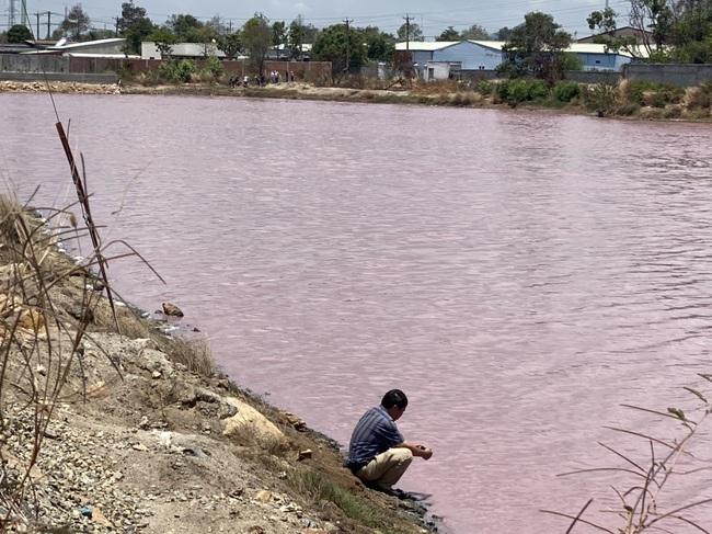 """Cận cảnh đầm nước màu hồng vì bị """"uống nước thải"""" - Ảnh 9."""