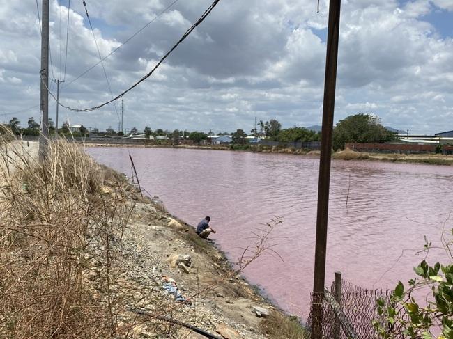 """Cận cảnh đầm nước màu hồng vì bị """"uống nước thải"""" - Ảnh 2."""