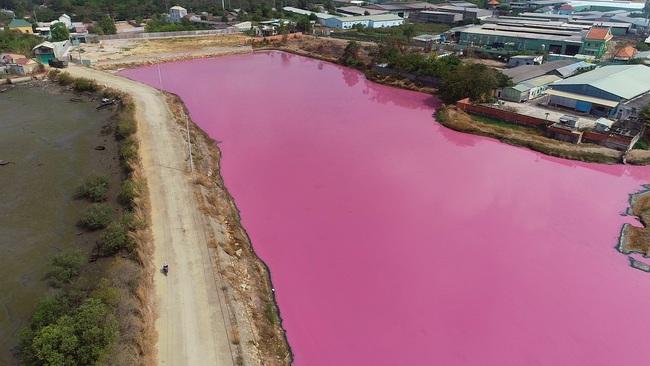 """Cận cảnh đầm nước màu hồng vì bị """"uống nước thải"""" - Ảnh 4."""