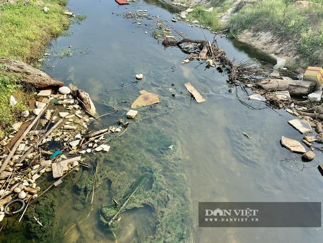 """Quảng Bình: """"Nhức nhối"""" tình trạng hồ tôm xả thải gây ô nhiễm, cá chết nổi lềnh bềnh - Ảnh 7."""