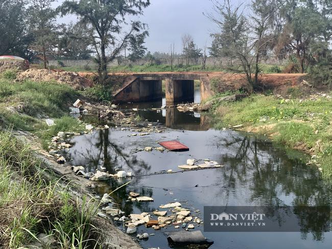 """Quảng Bình: """"Nhức nhối"""" tình trạng hồ tôm xả thải gây ô nhiễm, cá chết nổi lềnh bềnh - Ảnh 5."""
