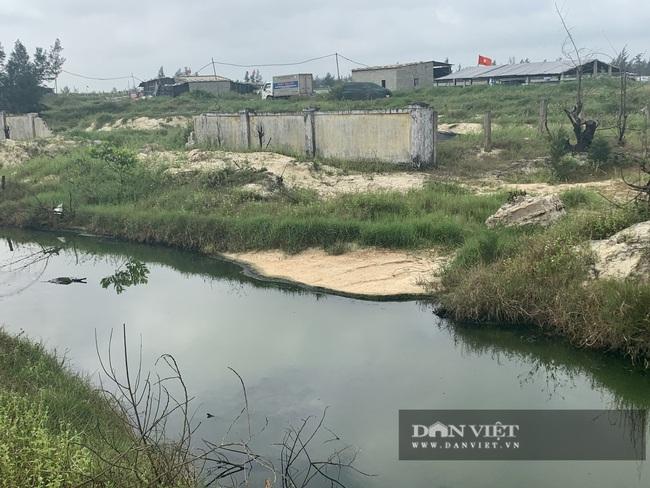 """Quảng Bình: """"Nhức nhối"""" tình trạng hồ tôm xả thải gây ô nhiễm, cá chết nổi lềnh bềnh - Ảnh 2."""