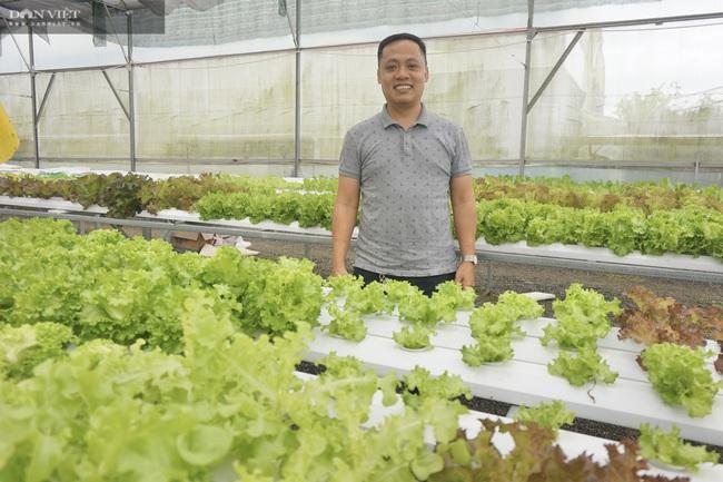 8X Đà Nẵng khởi nghiệp thành công với vườn rau thông minh 4.0 đầu tiên tại Việt Nam - Ảnh 1.