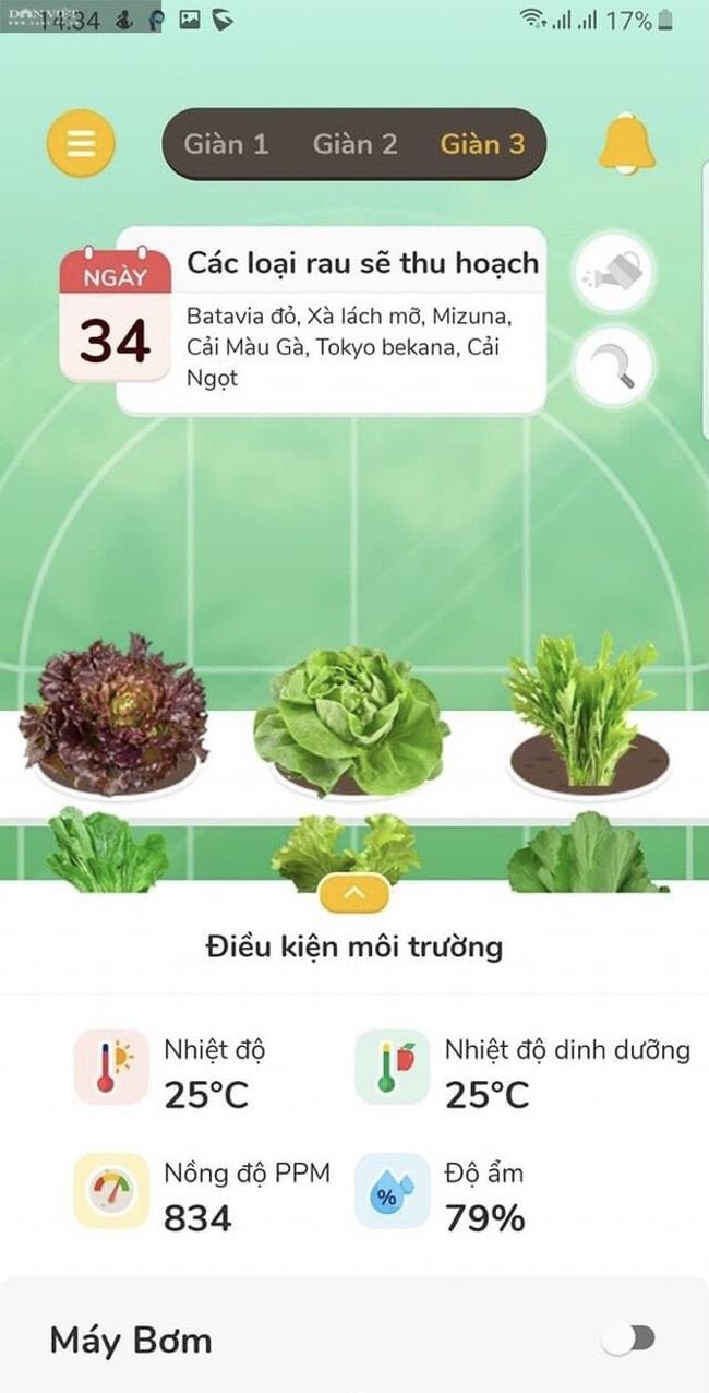 8X Đà Nẵng khởi nghiệp thành công với vườn rau thông minh 4.0 đầu tiên tại Việt Nam - Ảnh 2.