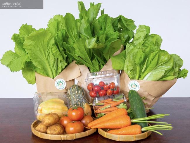 8X Đà Nẵng khởi nghiệp thành công với vườn rau thông minh 4.0 đầu tiên tại Việt Nam - Ảnh 7.