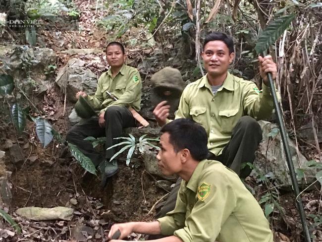 Những người thầm lặng bảo vệ rừng Khe Bu - Ảnh 4.