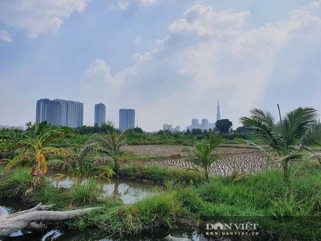 """Quy hoạch Thanh Đa treo 30 năm, """"siêu đô thị"""" tỷ USD nhìn đâu cũng thấy nghẹn lòng - Ảnh 14."""