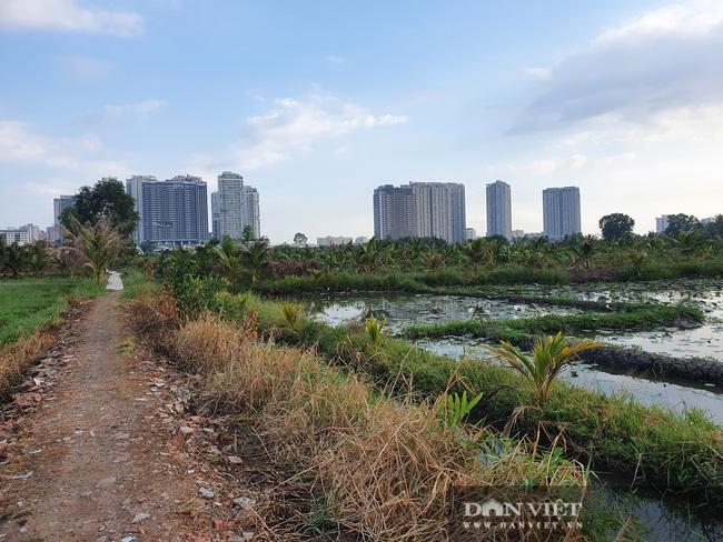 """ẢNH: Quy hoạch Thanh Đa treo 30 năm, """"siêu đô thị"""" tỷ USD nhìn đâu cũng thấy nghẹn lòng - Ảnh 6."""