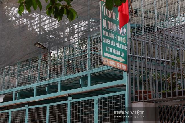 """Hoa lan đột biến: Mẹ chủ vườn lan Hà Nội """"ôm"""" 200 tỷ của khách bỏ trốn nói """"con tôi bị người ta lừa"""" - Ảnh 2."""