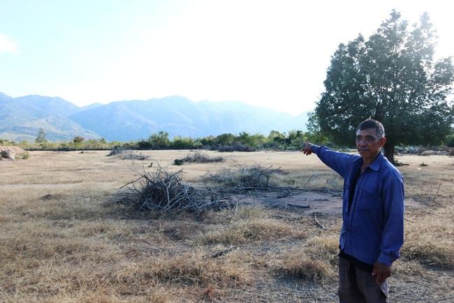Ninh Thuận: Dân khổ vì dự án chăn nuôi bò cao sản sau 5 năm vẫn nằm trên giấy - Ảnh 4.