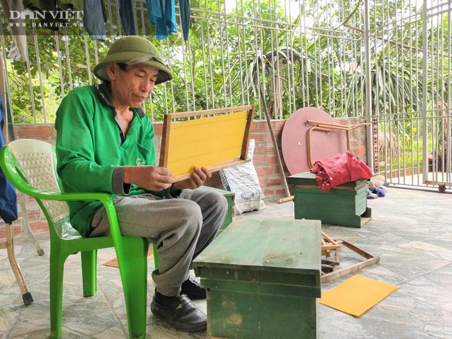 """Nuôi loài côn trồng lấy mật, lão nông Hà Tĩnh """"bỏ túi"""" hàng trăm triệu mỗi năm - Ảnh 6."""