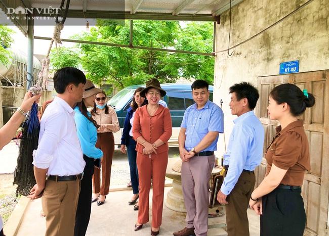 Đoàn công tác Hội Nông dân Việt Nam thăm mô hình sản xuất nông nghiệp tại Hà Tĩnh - Ảnh 4.