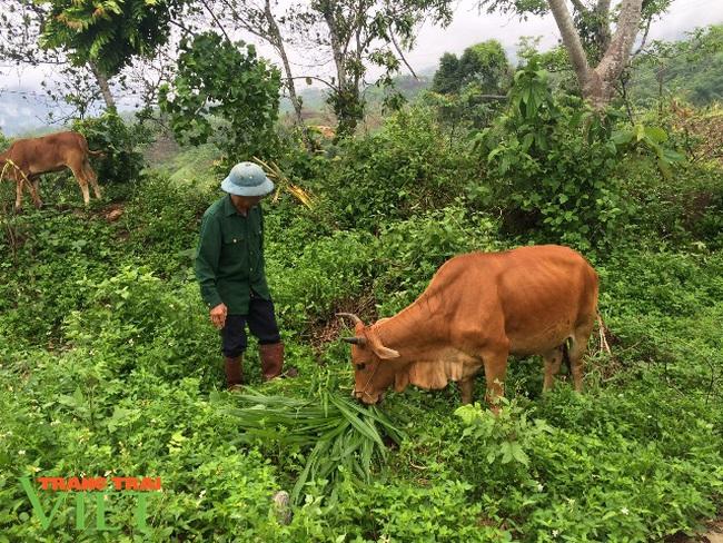 Lai Châu: Nỗ lực kéo giảm tỷ lệ hộ nghèo ở một xã vùng cao - Ảnh 2.