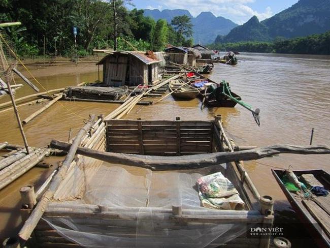 Nghi vấn các doanh nghiệp chế biến lâm sản xả thải là nguyên nhân cá sông Mã chết ngày càng có cơ sở - Ảnh 1.
