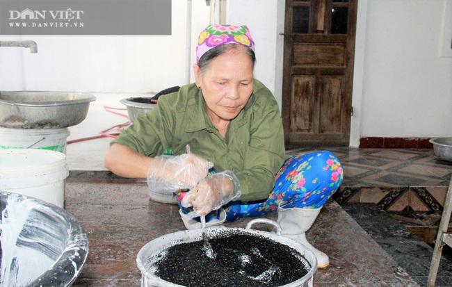 Hà Tĩnh: Thứ bánh gì mà có nhiều vừng đen, ăn giòn rụm giúp nông dân có của ăn của để - Ảnh 6.