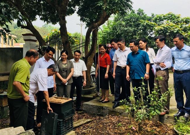 Ninh Binh: Thành lập Hợp tác xã sản xuất, tiêu thụ mật ong Cúc Phương - Ảnh 1.