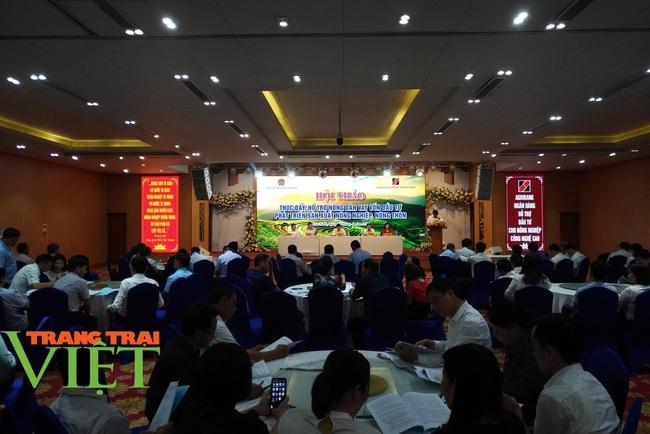 Hội Nông dân Hòa Bình: Tổ chức hội thảo hỗ trợ nông dân vay vốn, phát triển sản xuất - Ảnh 4.