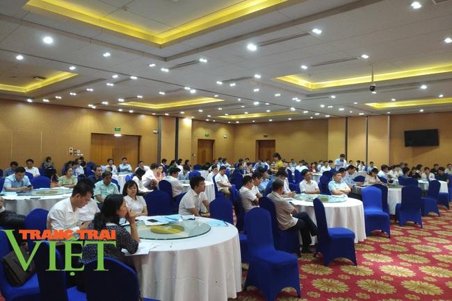 Hội Nông dân Hòa Bình: Tổ chức hội thảo hỗ trợ nông dân vay vốn, phát triển sản xuất - Ảnh 6.