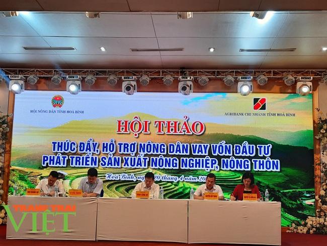 Hội Nông dân Hòa Bình: Tổ chức hội thảo hỗ trợ nông dân vay vốn, phát triển sản xuất - Ảnh 2.