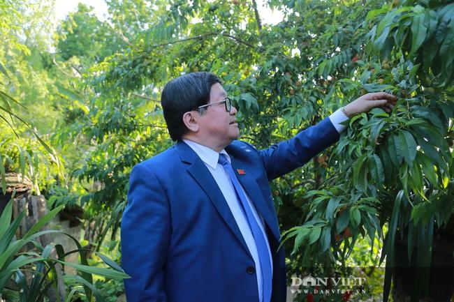 Ông Thào Xuân Sùng trèo đèo, lội suối chia sẻ cách nuôi gà với bà con huyện Phong Thổ (Lai Châu) - Ảnh 3.