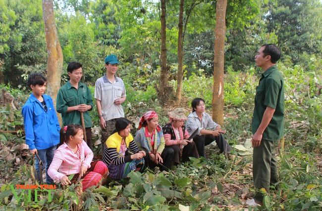 Lai Châu: Ý thức giữ rừng của người dân nâng lên, số vụ cháy rừng giảm - Ảnh 1.