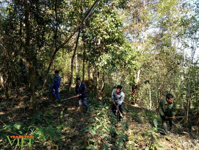 Lai Châu: Ý thức giữ rừng của người dân nâng lên, số vụ cháy rừng giảm - Ảnh 2.