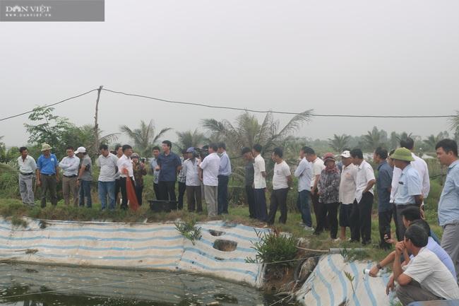 Nghệ An: Nuôi tôm thẻ chân trắng, nông dân lãi 1,3 tỉ đồng nhờ sản phẩm Mother Water của Bồ Đề - Ảnh 5.