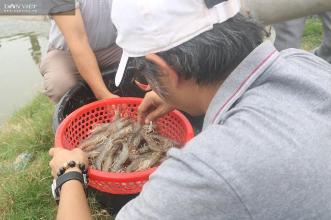 Nghệ An: Nuôi tôm thẻ chân trắng, nông dân lãi 1,3 tỉ đồng nhờ sản phẩm Mother Water của Bồ Đề - Ảnh 3.
