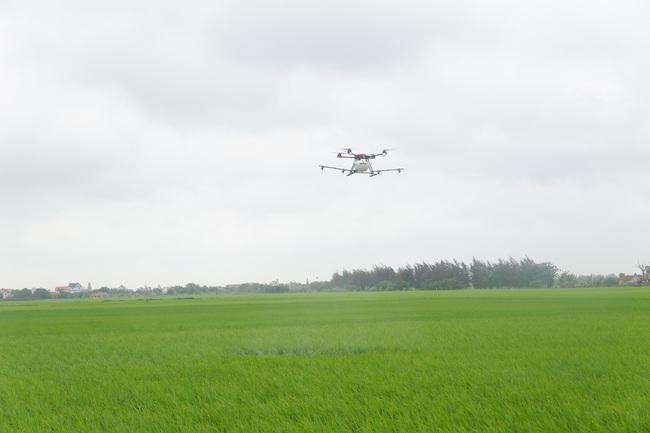 Dùng máy bay không người lái trong sản xuất lúa: Giảm sâu bệnh, nông dân nhẹ công - Ảnh 1.