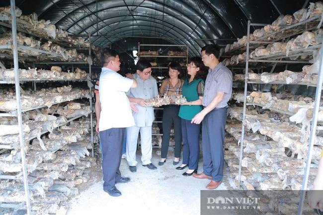 Đồng chí Thào Xuân Sùng: Đánh giá cao mô hình trồng hoa hồng của xã Sìn Hồ - Ảnh 7.