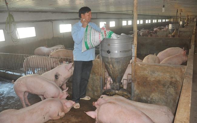 Vượt khó, vực dậy ngành chăn nuôi, thủy sản  - Ảnh 1.