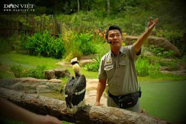 Chiêm ngưỡng hàng trăm chú chim lông vũ khắp thế giới.... hội tụ tại Phú Quốc - Ảnh 18.