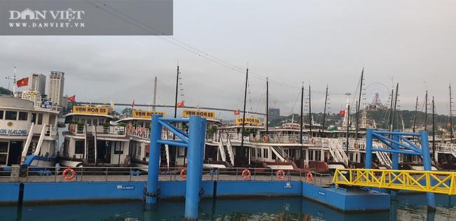 """""""Hủy tour"""" 30/4, nhiều khu du lịch ở Quảng Ninh vắng khách - Ảnh 4."""