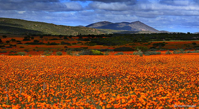 """Khám phá vẻ đẹp Nam Phi qua những điểm đến lạ kỳ """"chẳng giống ai"""" - Ảnh 4."""
