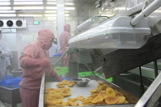 Xuất khẩu rau quả đạt gần tỷ đô - Ảnh 1.