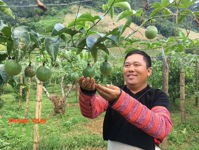 Người dân Vân Hồ: Góp sức cùng chính quyền xây dựng nông thôn mới - Ảnh 7.