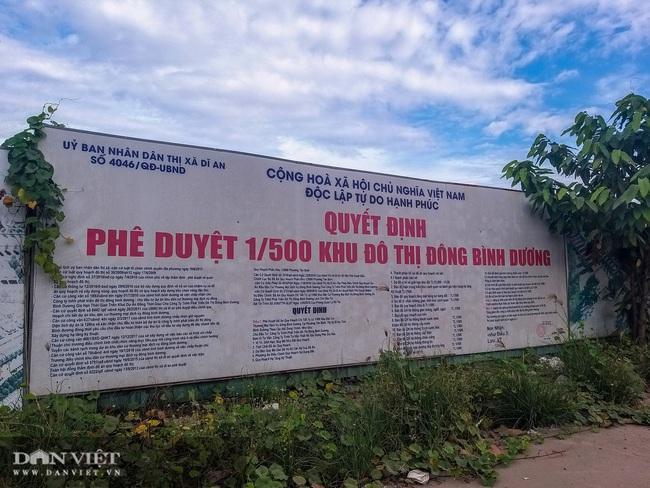 Dự án Đông Bình Dương 5 lần được giao đất và thay đổi quy hoạch ra sao? - Ảnh 2.