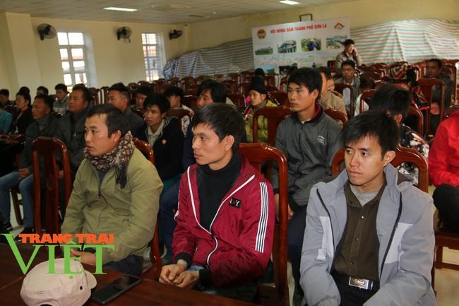 Hội Nông dân Sơn La: Tổ chức xây dựng công tác hội vững mạnh - Ảnh 7.