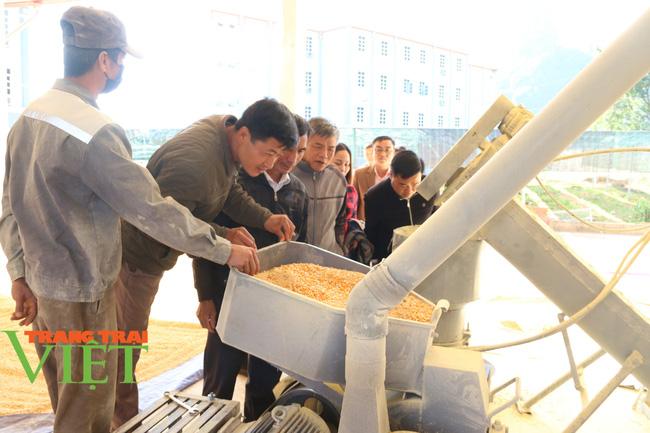 Hội Nông dân Sơn La: Tổ chức xây dựng công tác hội vững mạnh - Ảnh 6.