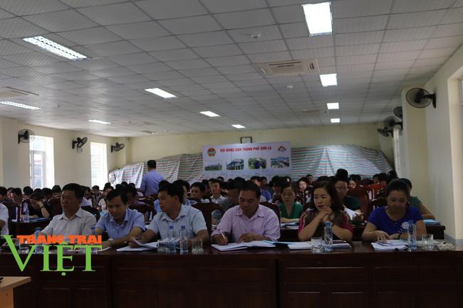 Hội Nông dân Sơn La: Tổ chức xây dựng công tác hội vững mạnh - Ảnh 1.