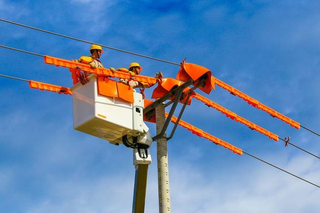 EVN đề ra mục tiêu đảm bảo vận hành an toàn, ổn định hệ thống điện các tháng mùa khô - Ảnh 1.