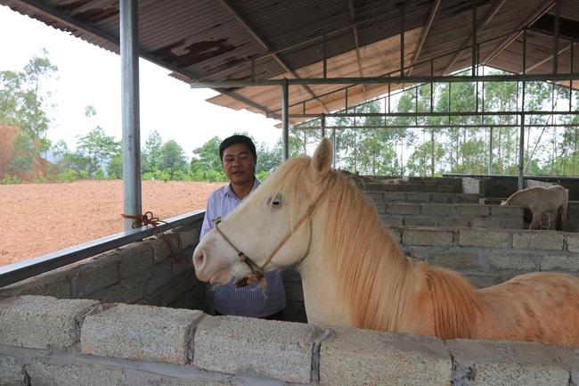 """""""Vén mây"""" đi tìm bạch mã xứ Lạng (bài 1): Ngược ngàn vào """"vương quốc ngựa bạch"""" - Ảnh 1."""