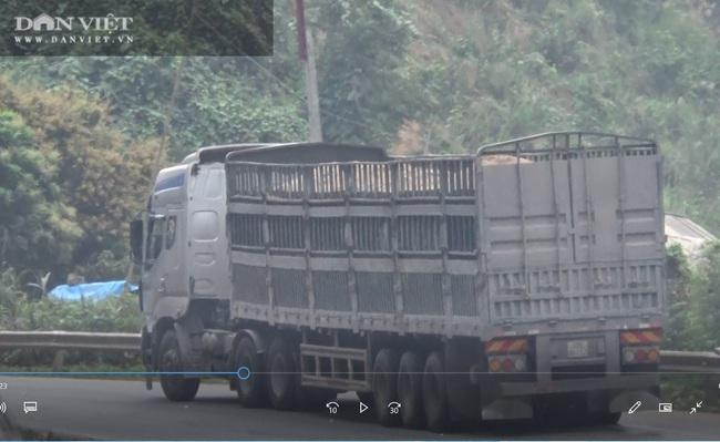 Hà Giang: Xử phạt xe quá tải hơn 150% trên quốc lộ - Ảnh 1.