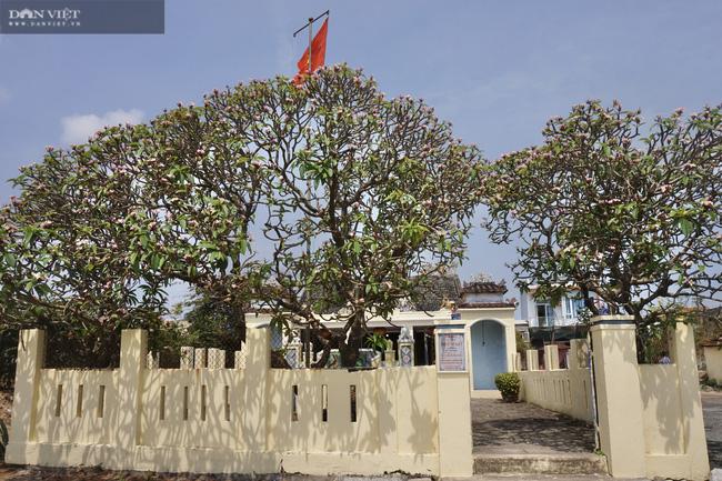 Đà Nẵng: Độc đáo ngôi làng chài cổ duy nhất ở phố biển, có sông có núi, có đặc sản tiến Vua - Ảnh 3.