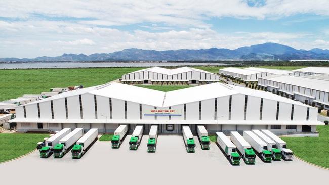 """Logistics """"trọn gói"""" cho nông nghiệp – THILOGI góp phần mang nông sản Việt ra thế giới - Ảnh 4."""