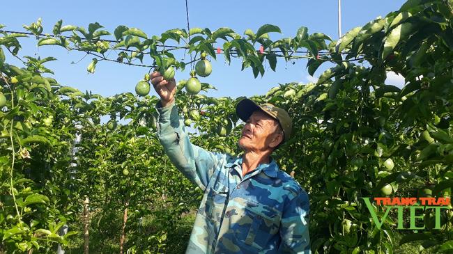 Hội Nông dân Lai Châu: Nâng cao hiệu quả các hoạt động tư vấn, hỗ trợ, dạy nghề cho nông dân - Ảnh 1.
